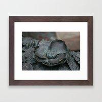Botanic Bronze DP160209a… Framed Art Print
