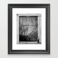 Branches At The Window  Framed Art Print