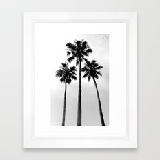 Palm Trees Three Framed Art Print