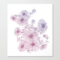 Chrysanthemum Canvas Print
