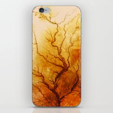 Hesperus III iPhone & iPod Skin