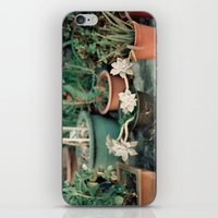 Roadside Greenery iPhone & iPod Skin