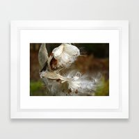 Whispy Framed Art Print