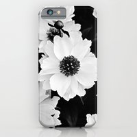 One Afternoon In Mid-May iPhone 6 Slim Case