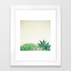 Succulent Forest Framed Art Print