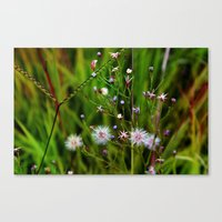 I'd Rather Be A Weed Tha… Canvas Print