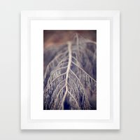 December's Anatomy Framed Art Print