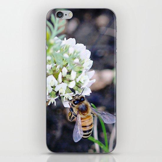Busy iPhone & iPod Skin