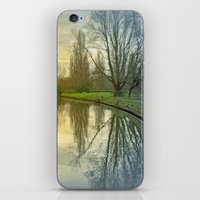 TREE-FLECTED iPhone & iPod Skin