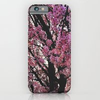 Spring Tree iPhone 6 Slim Case
