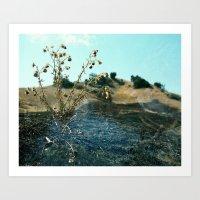 Burnt Malibu Art Print