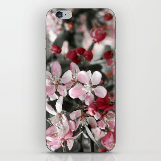 Shades of Pink and Gray iPhone & iPod Skin