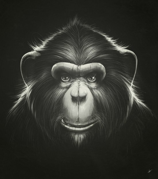 Monkee with Tooth Canvas Print