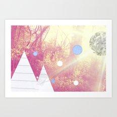 A study of woodland light Art Print