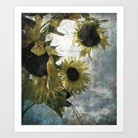 Autumnal Sunflowers Art Print