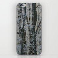 Michigan Winter  iPhone & iPod Skin
