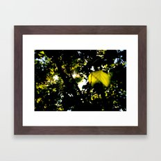 The sun exploded today Framed Art Print