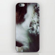 Guadalupe Wave iPhone & iPod Skin