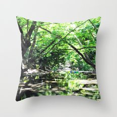Baloons in river's lake Throw Pillow