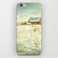 Winter Meadow iPhone & iPod Skin