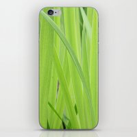 Mystic Green iPhone & iPod Skin