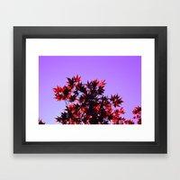 Fall Color, Autumn Leave… Framed Art Print