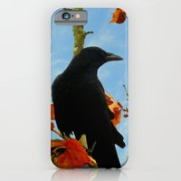 Crow In A Plane Tree iPhone 6 Slim Case