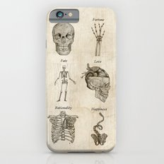 Anatomy Lessons iPhone 6 Slim Case