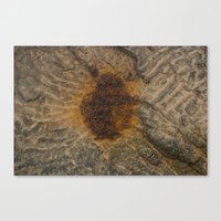 Rusted Water Canvas Print