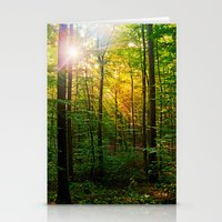 Morning sun in the forest Stationery Cards