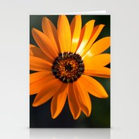 Vibrant Orange Flower Stationery Cards
