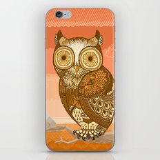Owlie in Autumn iPhone & iPod Skin