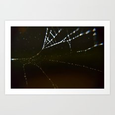 Watery Web Art Print