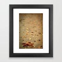 Shells & Starfish Framed Art Print