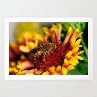 It's a bee's life Art Print