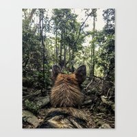 Brisa In The Woods Canvas Print
