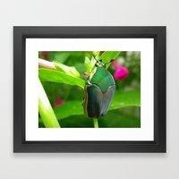 Japanese Beetle Framed Art Print