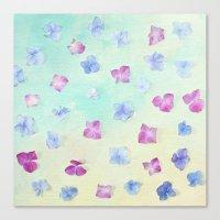 hydrangea petals Canvas Print