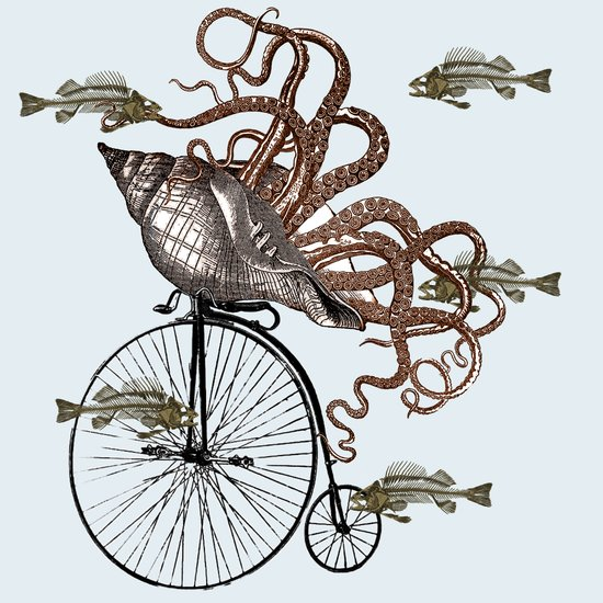 Fish Needs A Bicycle Art Print