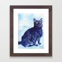 Spot the Cat Framed Art Print
