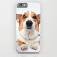 Dog -  iPhone 6 Slim Case