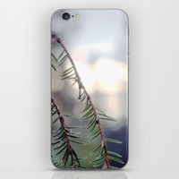 sunset in the woods. iPhone & iPod Skin