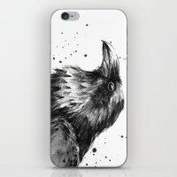 Raven Watercolor iPhone & iPod Skin