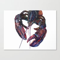 Maine Lobster Art - Watercolor Print Canvas Print