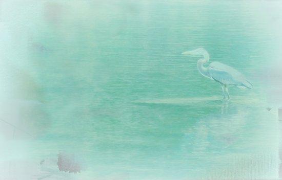 Blue Heron - collage Art Print