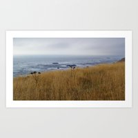 Navaro Bluffs, fall flowers over the ocean II Art Print