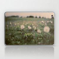 Forgotten Wishes Laptop & iPad Skin