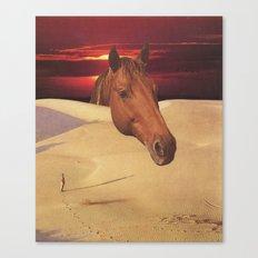 equestrian dawn Canvas Print