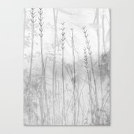 Water Mirror Canvas Print