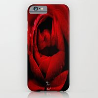 iPhone & iPod Case featuring A kiss from a rose by D77 The DigArtisT